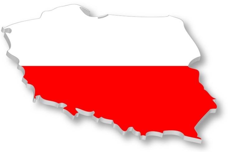 Lenkiška produkcija
